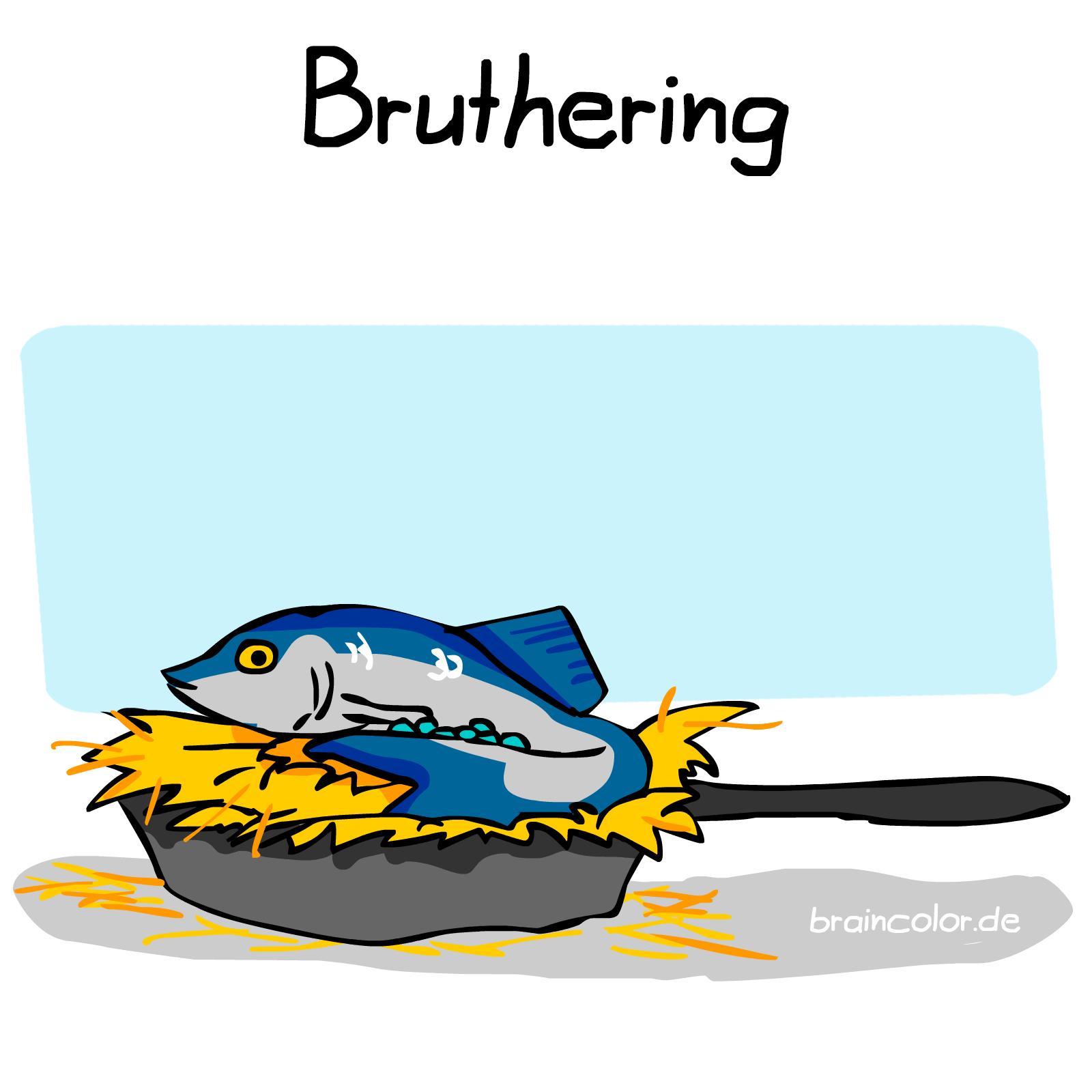 brathering