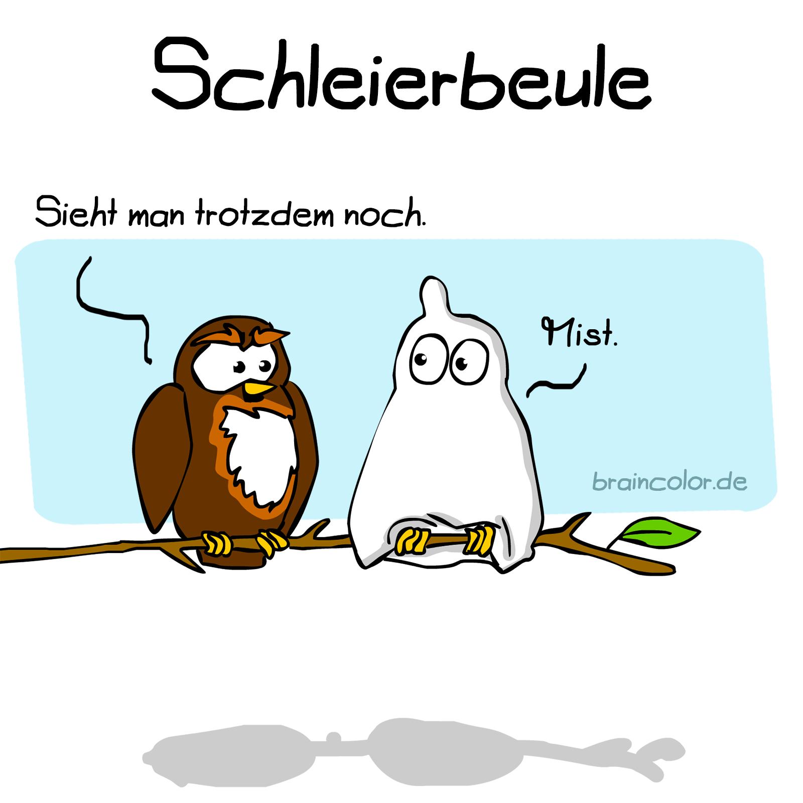 schleiereule