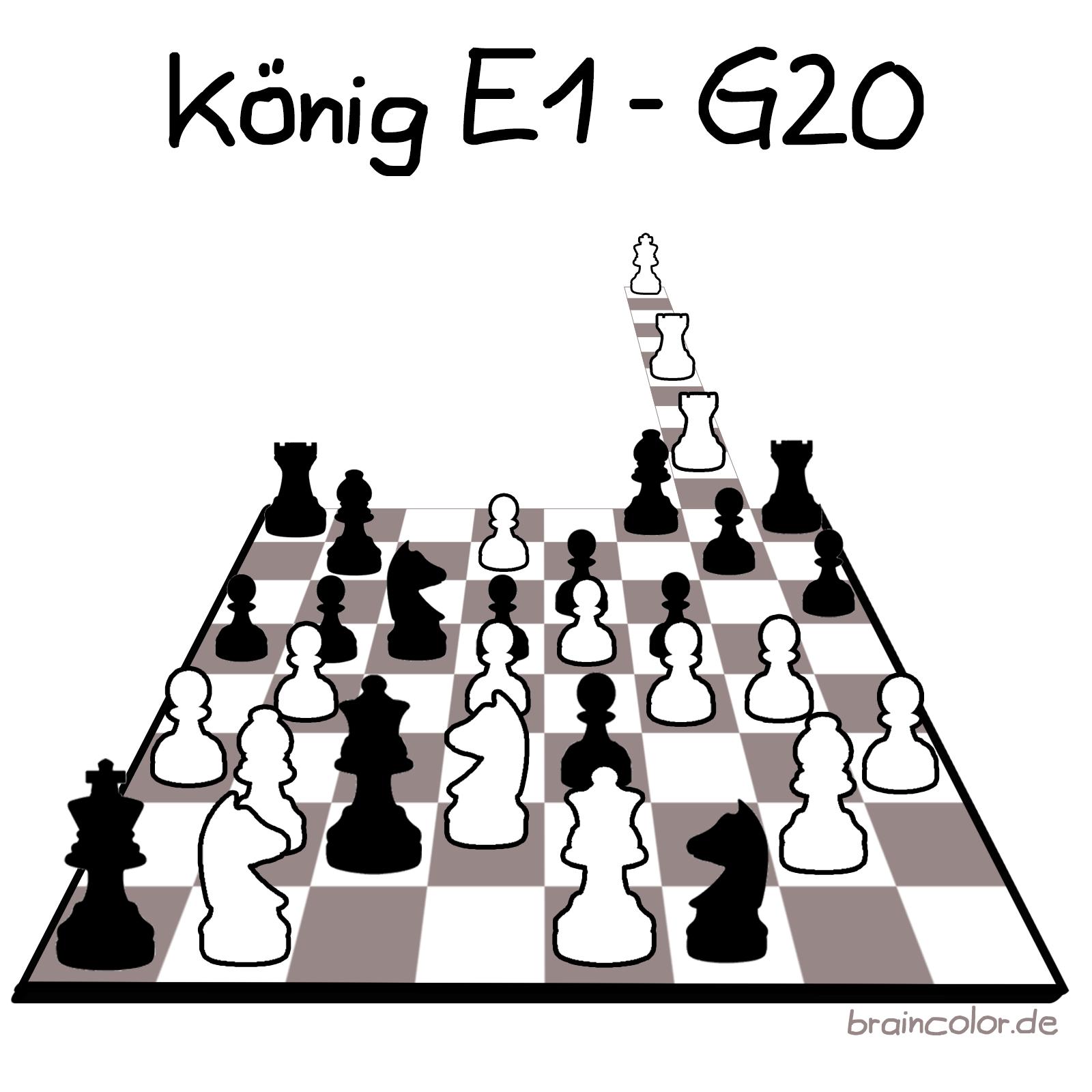 G20 Schach
