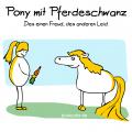 pony-pferdeschwanz