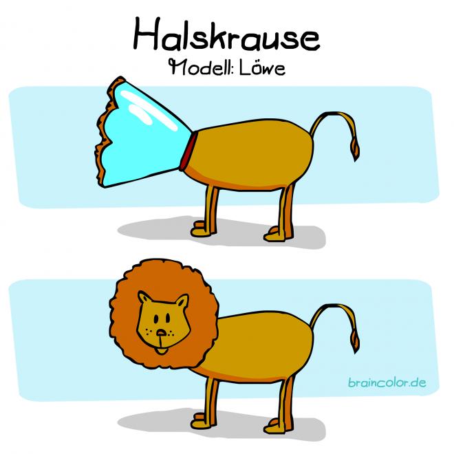 Halskrause, Trichter, Kragen für Hunde und Katzen, Modell: Löwe